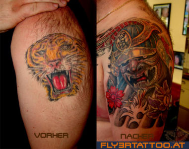 Cover-up-tiger-kabuto